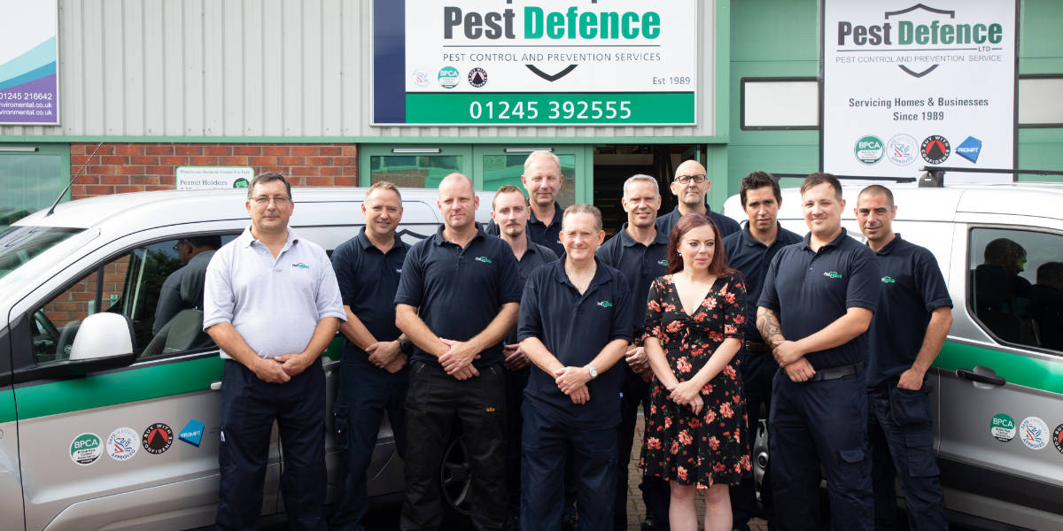 Pest Defence in Loughton